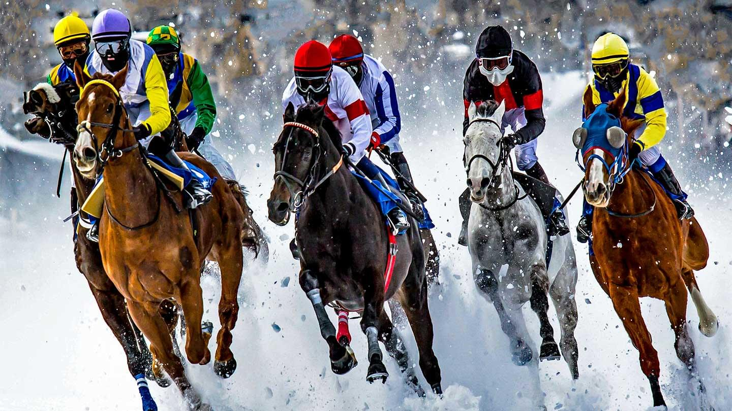 White Turf Top Class Horse Racing In St Moritz Lunajets